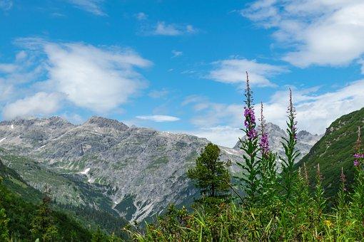 Lech, Lech Valley, Alpine, Austria, Vorarlberg, Summer