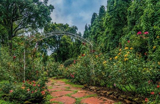 Botanical Gardens, Chiang Mai, Walkway, Nature, Outdoor