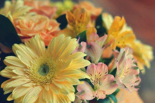 Bouquet, Flower, Bloom, Flowers, Petals, Flora, Yellow