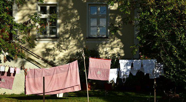 Leash, Clothes Line, Hang, Dry, Laundry, Budget