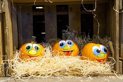 Pumpkin, Halloween, Autumn, Decoration, Harvest