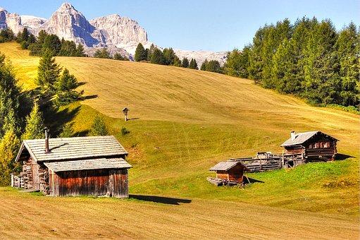 Pralongia, Dolomites, Alm, Nature, Enjoy, Summer