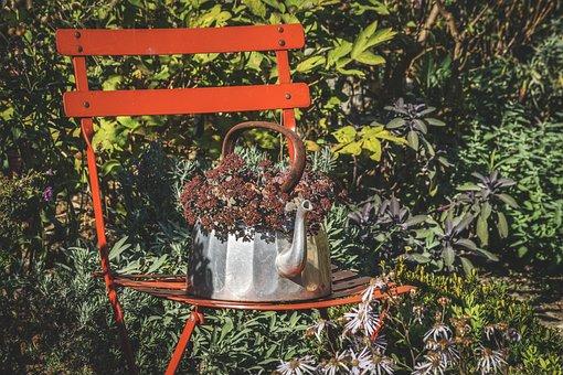 Garden, Impressions, Flowers, Herbstimpression