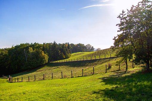 Landscape, Pasture, Meadow, Grass, Rural, Nature, Sky