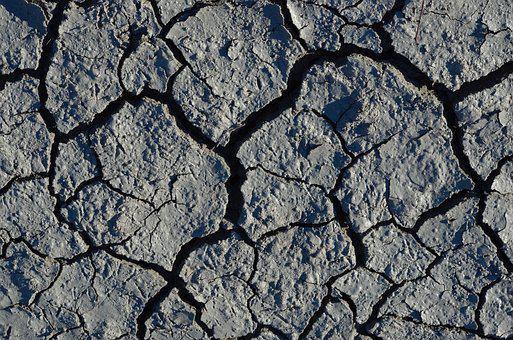 Drought, Withers, Dry, Earth, Ground, Dehydrated