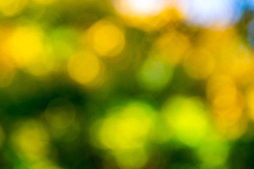 Bokeh, Wallpaper, Texture, Light, Glow, Colorful, Green