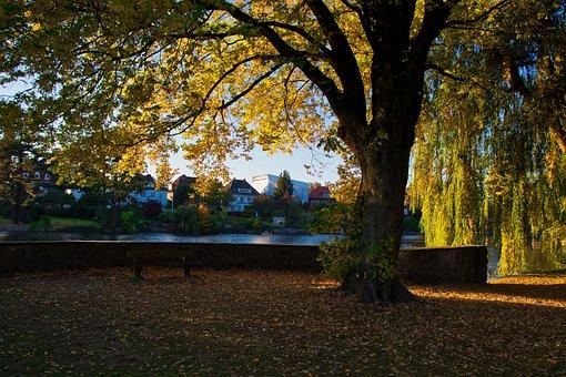 Alster, Hamburg, Sunset, Water, Waters, Nature, Sky