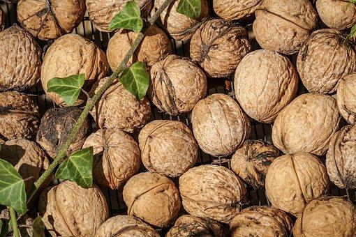 Nuts, Tree Nuts, Walnut, Shell, Nature, Brown, Autumn
