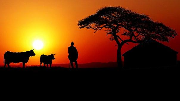 Sunset, Africa, Herds, Guardian, Hut, Nature, Sky, Sun