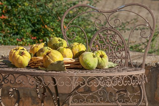 Quince, Still Life, Fruit, Herbstimpression, Tree Fruit