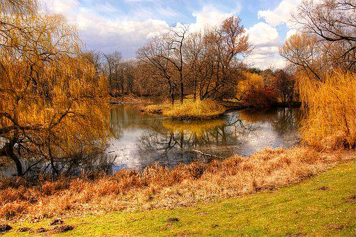 Pond, Braunschweig, Waters, Water, Sky, Mood, Mirroring