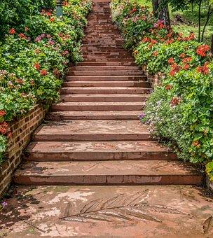 Steps, Garden, Chiang Mai, Botanical Gardens, Pathway