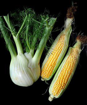 Fennel, Corn, Vegetables, Fresh, Organic, Garden, Food