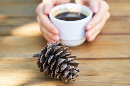 Coffee, Cup, Porcelain, Caffeine, Hands, Aroma