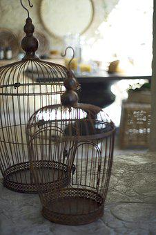 Cage, Bird, Metal, Furniture, Decoration, Decorative