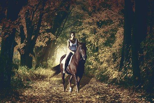 Woman, Horse Backriding, Autumn, Foggy, Night, Forest