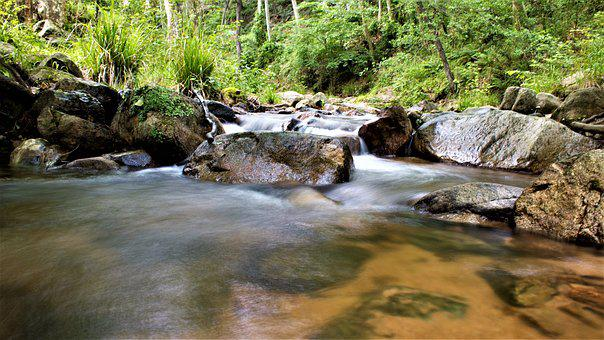 River, Riera, Natural Park, Gualba, Montseny, Barcelona
