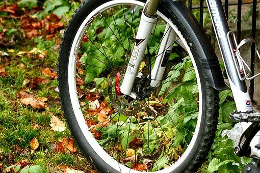 Wheel, Bike, Bicycle, Outdoor