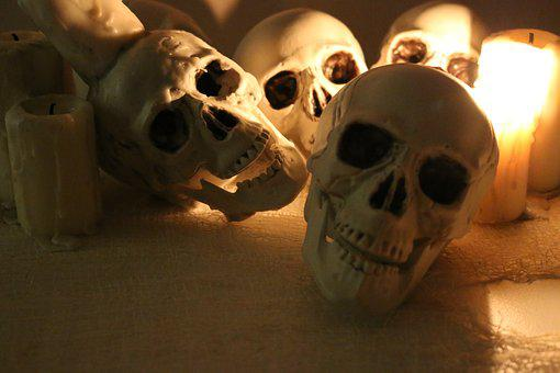 Skulls, Skull Allover, Halloween, Halloweendeco