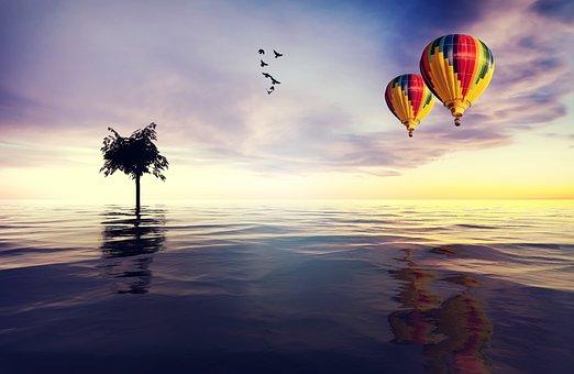 Lake, Water, Still, Reflection, Tree, Hot Air Balloons