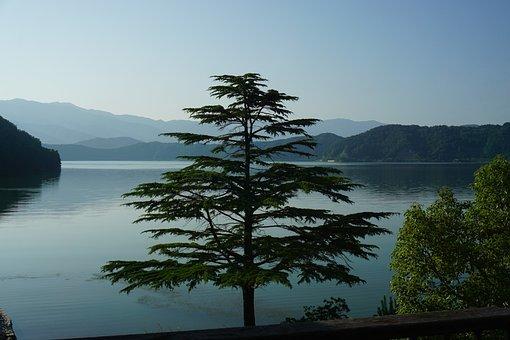 Lake, Walking Even Going, Wood, Evening, Sunset