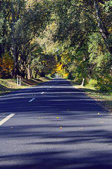Autumn, Autumn Road, Autumn Mood, Highway, Asphalt