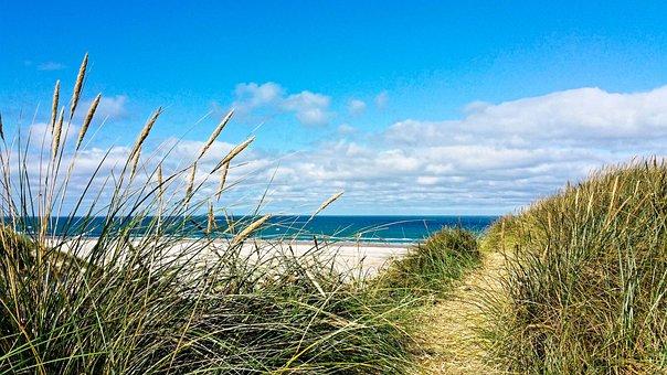 Denmark, Vacations, Nature, Coast, Summer, Dunes, Beach