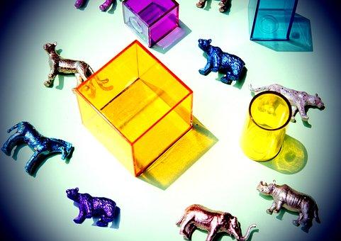 Amusement, Animals, Background, Childhood, Children