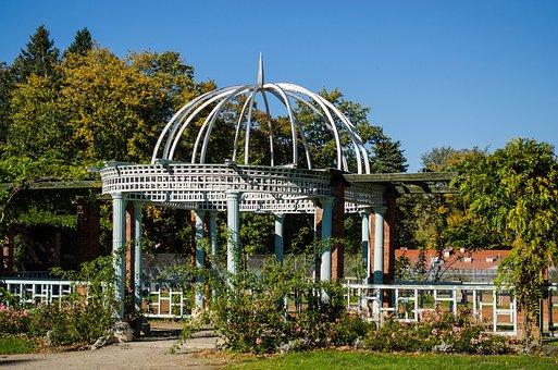 Park, Garden Terrace, Garden