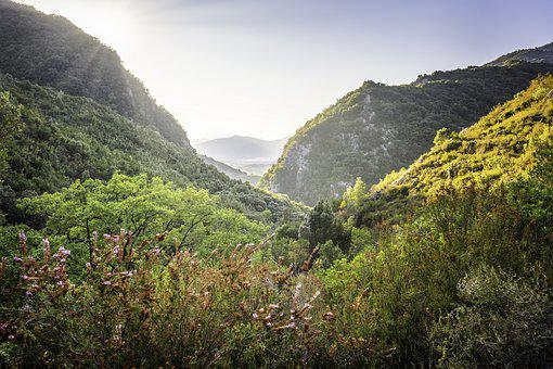 Hillsides, Autumn, Vegetation, Jungle, Forest, Green