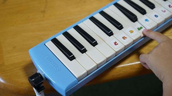 Keyboard, Harmonica, Musical Instruments