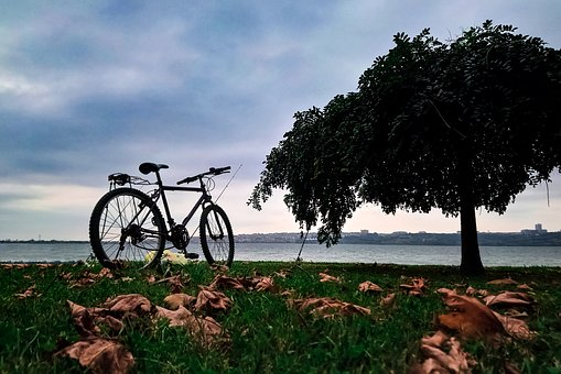 Bicycle, Travel, Nature, Sports, Landscape, Holiday