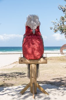Parrot, Galah, Model, Pink, Large, Sculpture, Art
