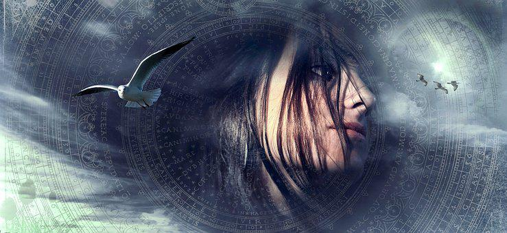 Fantasy, Portrait, Gull, Birds, Sky, Hair, Woman