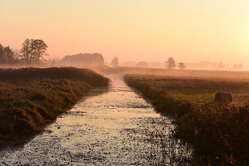 Sunrise, Dawn, The Kampinos Forest, Landscape, Morning