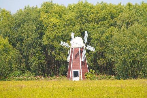China, Taihu Lake, Wetlands, Windmill, In Rice Field