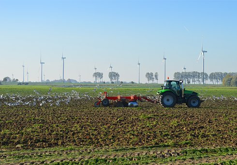 The North German Agriculture, Tractors, Gulls