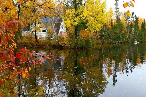 Landscape, Fall, Nature, Reflections, Colors, Trees