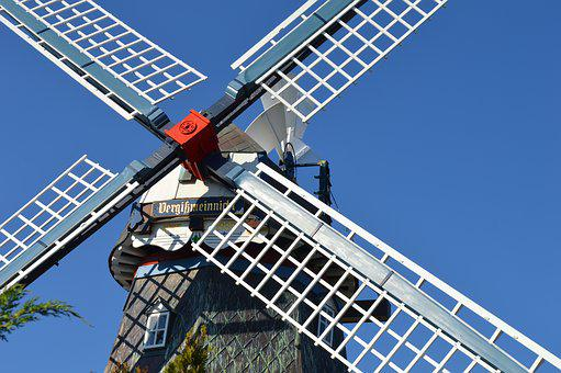 Mill Wing, Friedrichskoog, Wedding Mill Forget-me-not