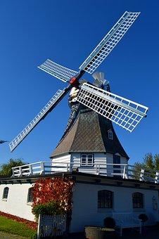 Mill, Friedrichskoog, Wedding Mill Forget-me-not