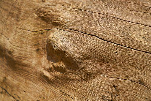Wood-fibre Boards, Tree, Wood, Texture, Old, Pattern