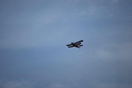 The Plane, Sky, Aviation, Aircraft