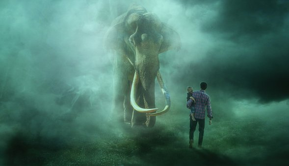 Encounter, Elephant, Fog, Mystical, Fantasy, Composing