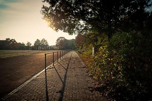 Autumn, Sunset, Sport, Field, Landscape, Sky, Forest