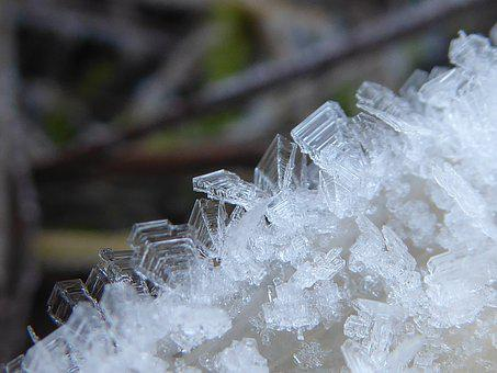 Hoarfrost, Frosty, Nature, Frozen, Frost, Iced, Icy