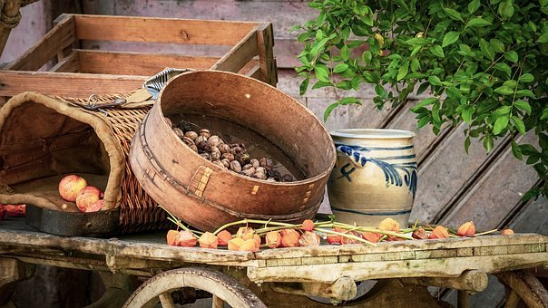 Herbstimpression, Harvest, Autumn, Dare, Apple, Nuts