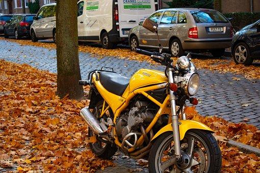 Motorcycle, Autumn, Bike, Sport, Speed, Motocross, Road