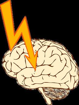 Epilepsy, Seizure, Stroke, Apoplexia, Apoplexy