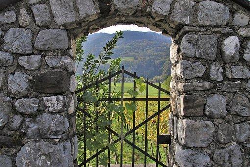 Lake Dusia, The Stones, Vineyard, Gate, Grapes