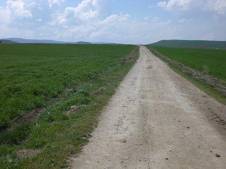 Pilgrimage, Jakobsweg, Camino De Santiago, Away, Field